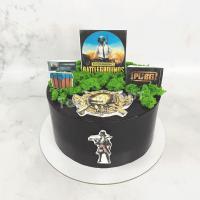 Торт №263 - Пабг