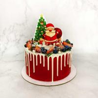 Торт №313 - Новогодний с ёлочкой и Дед Морозом
