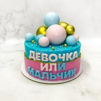 Торт №559 - Девочка или мальчик 2